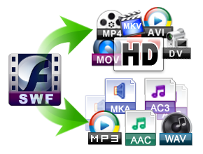 swf converter features 1