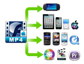 swf to mp4 mac features 3